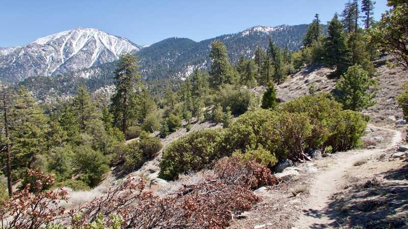 Descending Fuller Ridge with view of San Jacinto Mountain