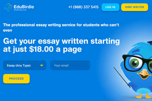 top essay writing service reviews by anonymous students  edubirdie