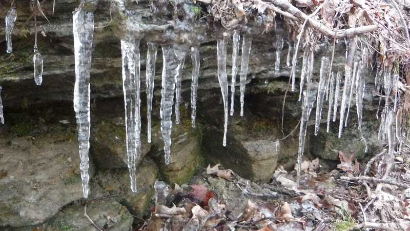 Icicles on North Old Mac Trail