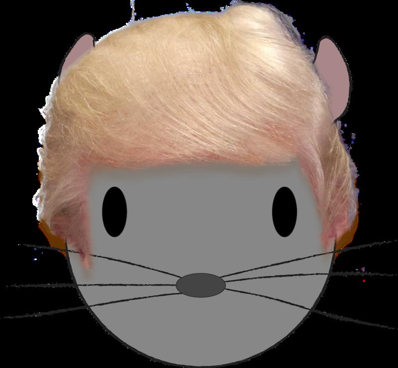 Trump Chinchilla