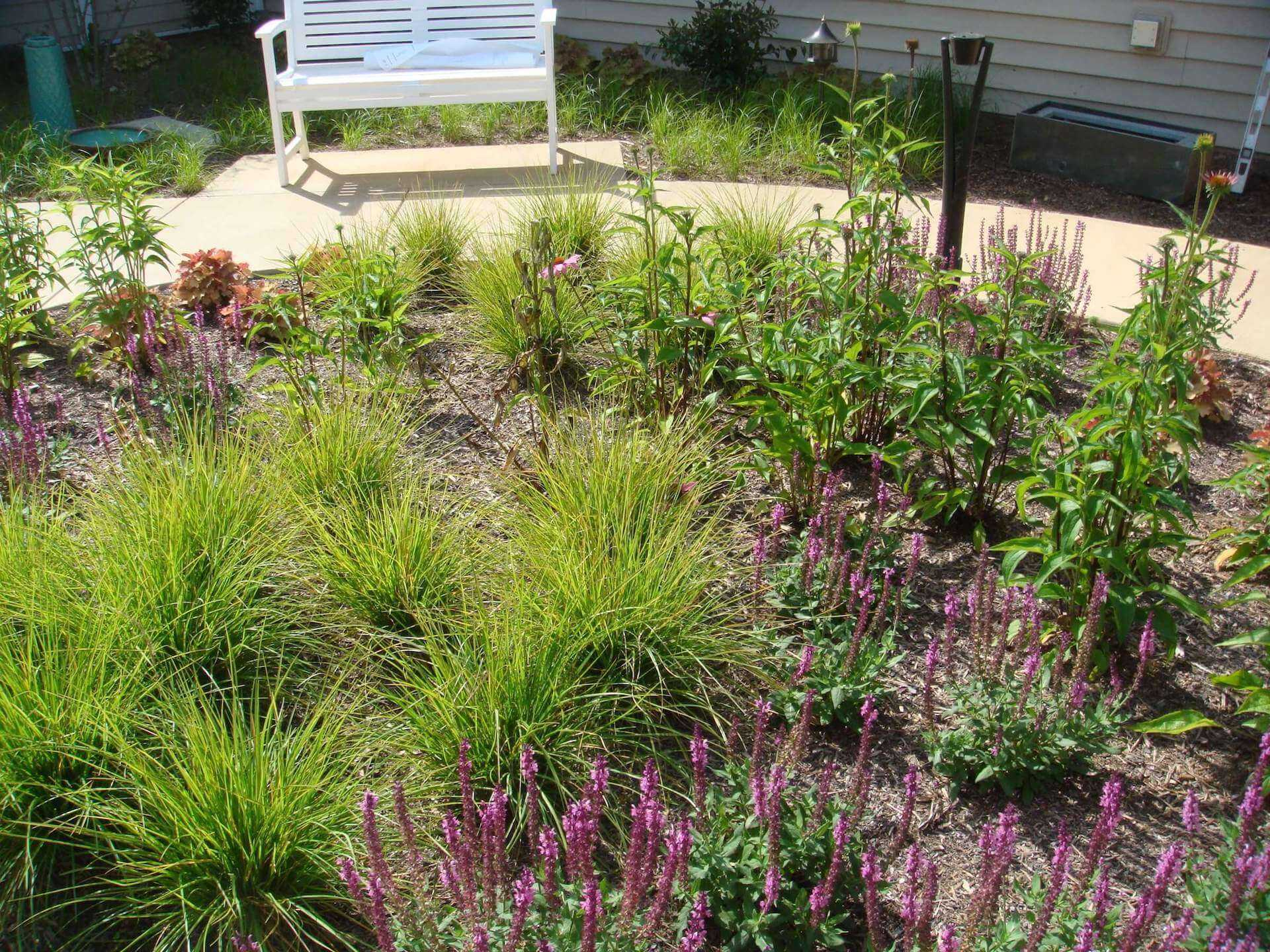 flowerbed in the midst of the landscaping