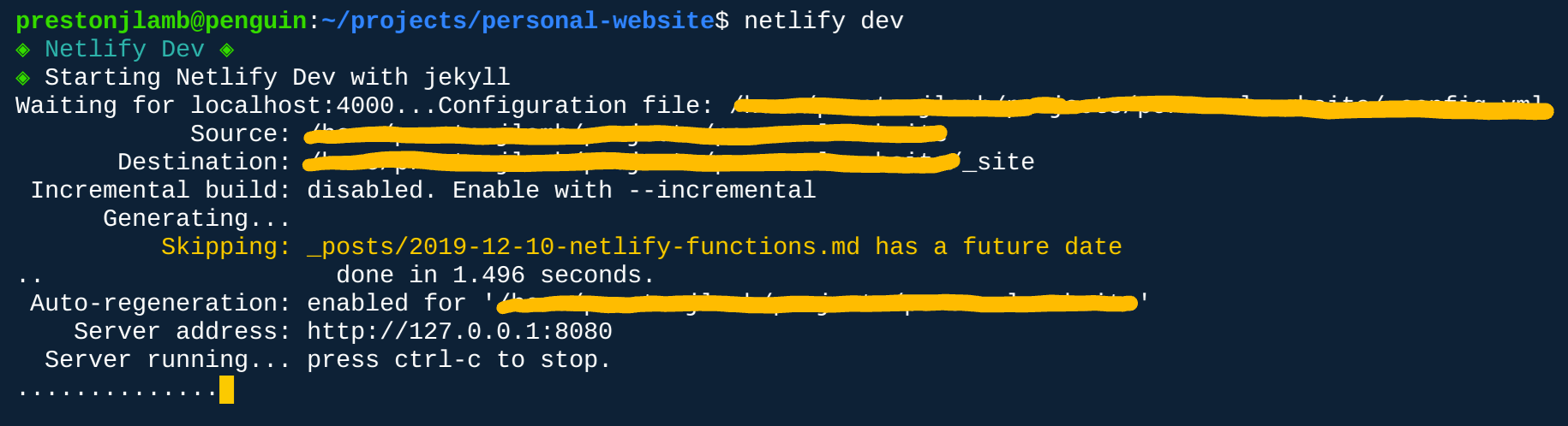 netlify dev command output