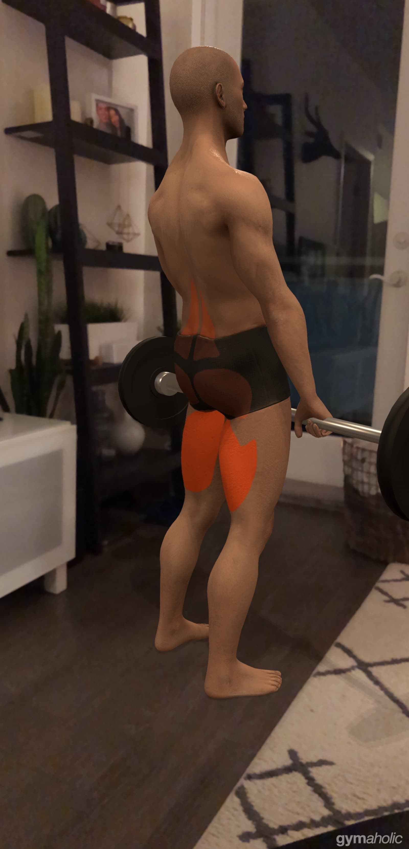 AR helps teach proper form and give cues for what muscles touse.