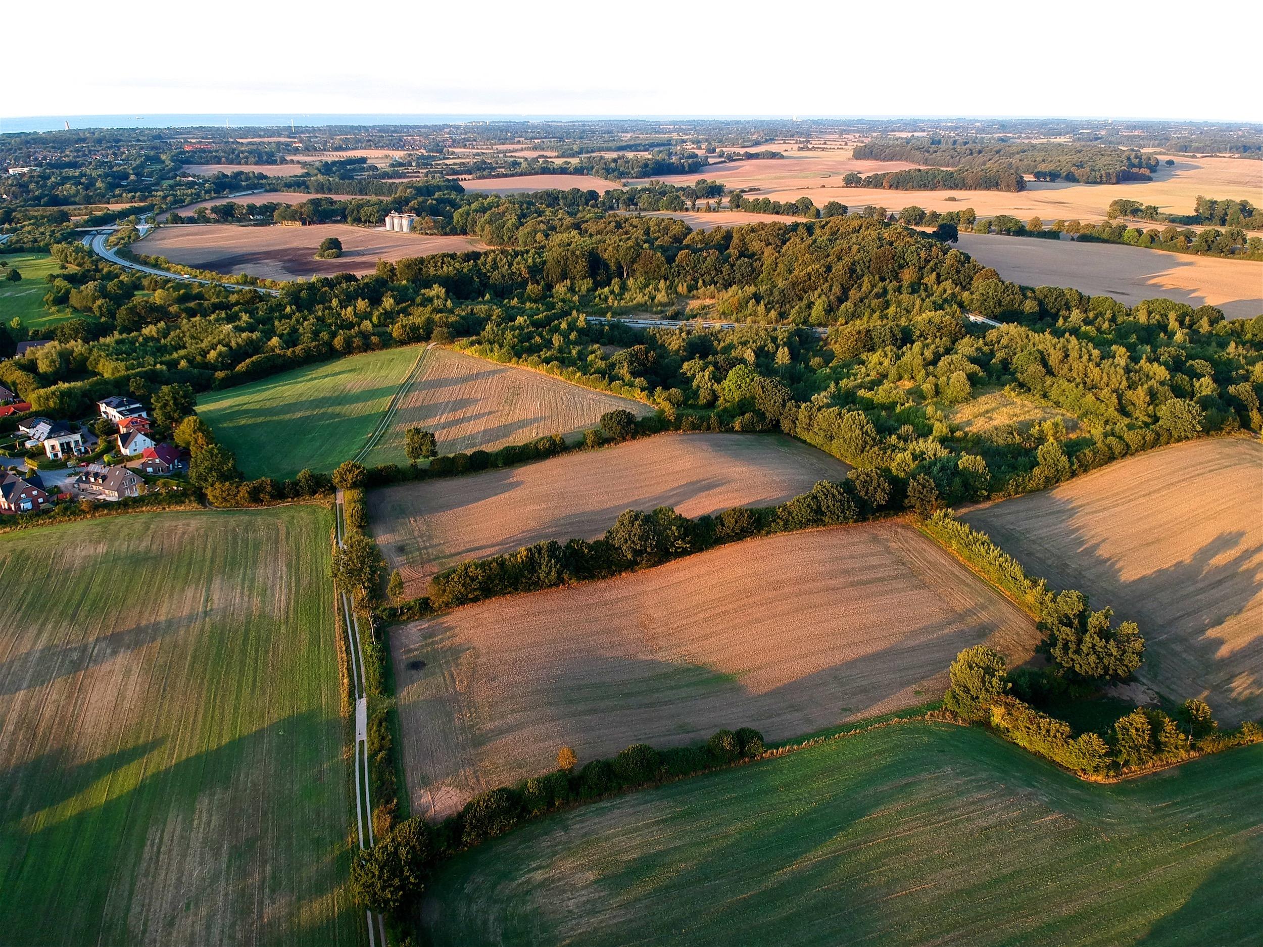 drone-fields
