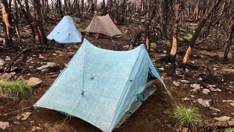 Three tents pitched among burnt trees