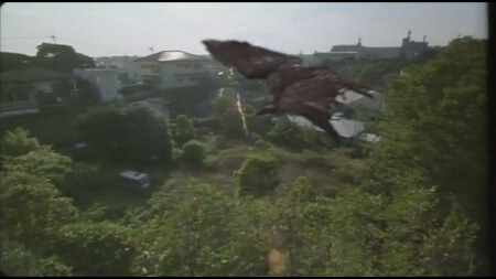 A rather badly composited CGI hawk flies over a suburban Tokyo skyline