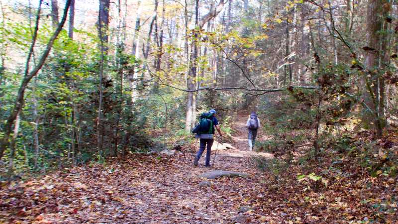 The Benton MacKaye and Appalachian trails use an old logging road