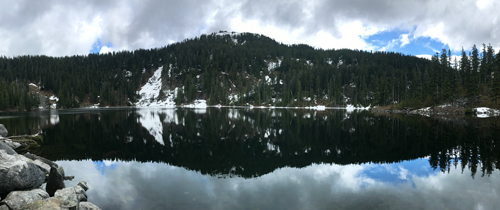 A partially snowy peak and some pine trees reflected and their reflection in a calm lake