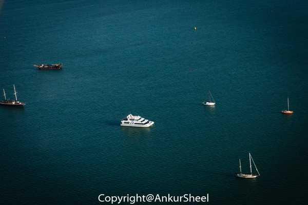 Auckland_Seaplanes-9