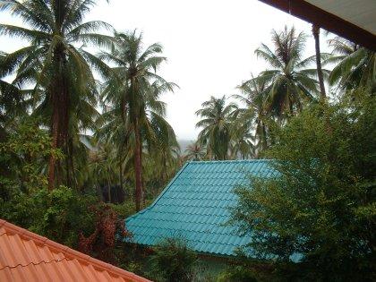 Es regnet. Rein theoretisch eigentlich immer, aber seit ich gestern das Office verlassen habe durchgehend. Nachts sogar so sehr, dass ich im ganzen Haus rumgelaufen bin (was eine Weltreise ist) und nach nassen Stellen gesucht habe. Es gab aber keine. Mein Haus war umgeben von einem Wasserfall rings um das Dach herum. Auch ein schöner Anblick. Jedenfalls regnet es seit einem Monat nahezu jeden Tag (immer, wenn Feierabend ist) und wenn es nicht regnet dann sind wir in Bangkok wo es regnet.  Und wenn ich mir [die durchschnittlichen Regenmengen so ansehe, die für die folgenden Monate zu erwarten sind][1] (Southern (East Coast) dann Surat Thani, Ko Samui auswählen und ein bisschen nach unten scrollen), dann erwartet uns noch einiges. Wird Zeit sich mal mit der Anschaffung von Gummiklamotten zu beschäftigen.  PS: Da wo man ein Wölkchen auf dem Bild sieht, ist normalerweise ein ziemlich großer Berg zu sehen.  PPS: Und es ist überhaupt nicht schön hier durch die Pfützen zu fahren. Das Wasser ist braun und sehr warm. Ohne Blockierung des Assiziationsmodus geht da gar nichts.  PPPS: Ich bin im Regen ins Office gefahren. Bin mal gespannt, kähähähää, ob die werte Kollegenschaft aufgrund des Regens irgendwelche Gründe findet die trockenen Gefilde des Brötchengebers verspätet aufzusuchen. Ich werde dann in meinem Knarrstuhl sitzen und grinsen und sagen, dass mir mein Unternehmen und seine Kunden was wert sind, weil ich mich bei jedem Wetter ins Büro schleppen würde. Genau. Dann gibts sicher ne Sondergratifikation. Ich brauch ja jetzt Geld für meine Latexklamotten.  **[Update: 8:48 Uhr]** Die nicht überaus unattraktive kleine Bürothai vom Anwalt gegenüber kam eher als sonst. Das Rennen läuft Kollegen.  **[Update: 8:57 Uhr]** Pet unsere Sekretärin (hab ich eigentlich schon mal von Pet erzählt? Das wäre ja fast ein Eintrag für sich) ist auch pünktlich da. Nehmt euch ein Beispiel. Das Rennen läuft. (Auch wenns gerade langweilig wird.)  **[Update: 9:21 Uhr]** Pah. Es regnet nicht mehr