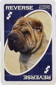 American Kennel Club: Non-Sporting Group Blue Uno Reverse Card