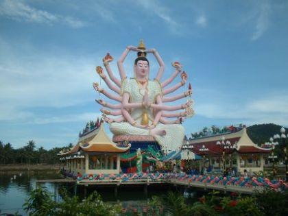So. Und was ist der Visakha Bucha Day nun für ein Tag? Einer der wichtigsten Tage im Buddhismus. Auf diesen Tag (der sechste Vollmond des Jahres) fallen Geburt, Erleuchtung und Tod Buddhas. Man geht in den Tempel (hab ich gemacht), hört den Mönchen beim Predigen zu (hab ich gemacht), verrichtet allerlei Dinge, die einen später mal glücklich machen werden (hab ich gemacht) und spendet kräftig (hab ich gemacht).   Alles in allem ein überaus gelungener Tag der Annäherung an Lord Buddha mit einem schmackhaften White-Snapper-Ende im Fischrestaurant meines Vertrauens.   [1]: http://www.thonak.de/original_index.htm