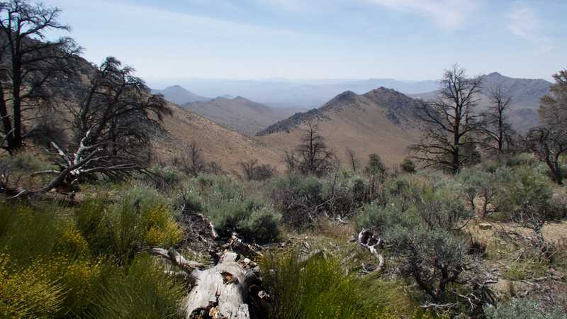 View from ridge looking into Mojave Desert