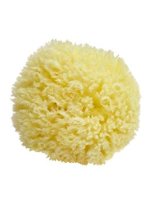 hypoallergenic-marine-sponge-10cm-greek-flavours