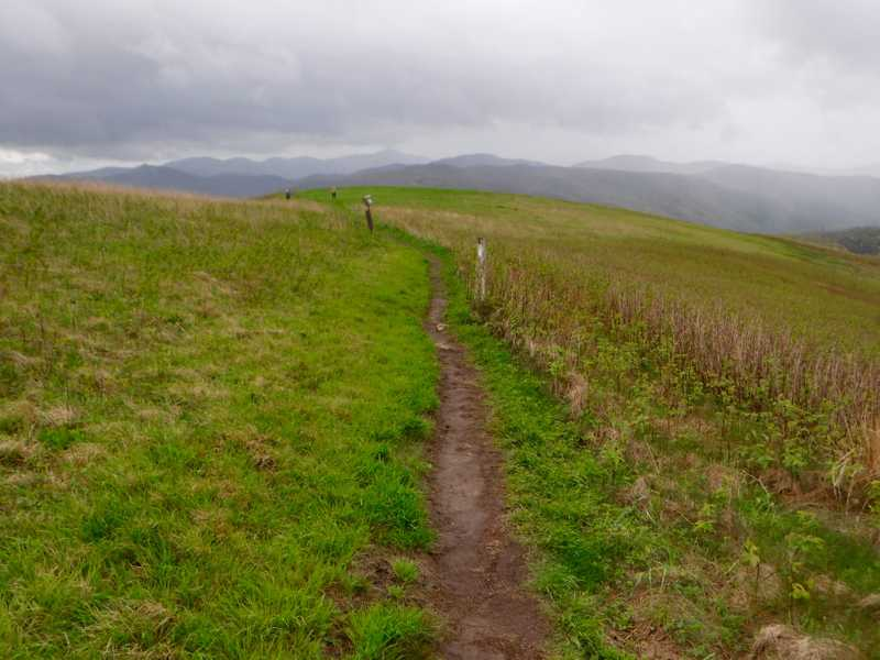 The trail over Max Patch