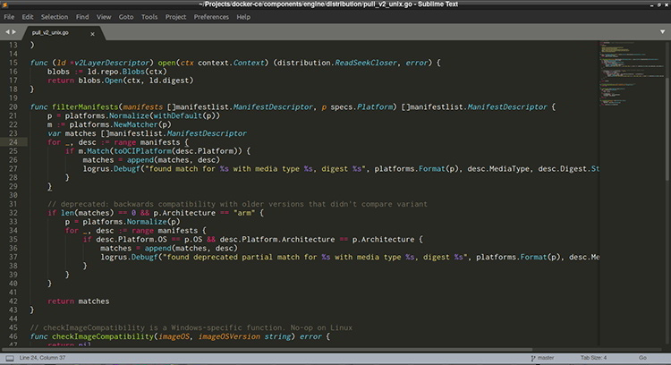 Editors for Go Programming
