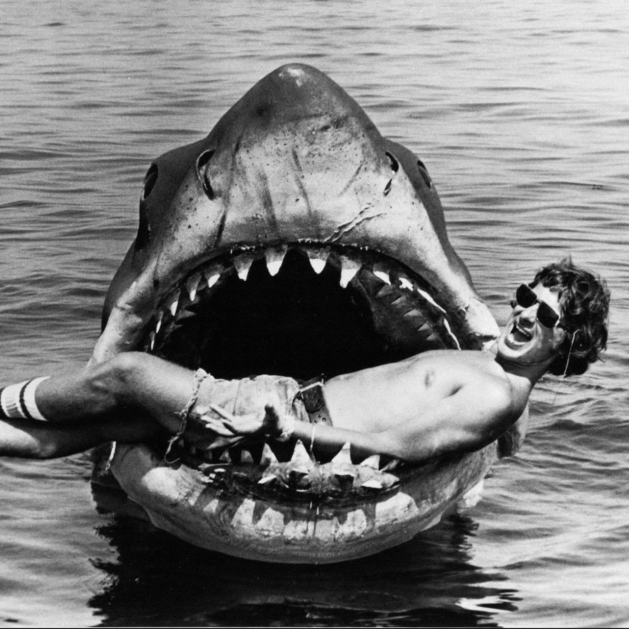 Стивен Спилберг насъемках фильма «Челюсти». Фото: imdb.com
