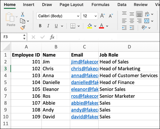 An Excel spreadsheet containing four columns of data: Employee ID, Name, Email address, and Job Role