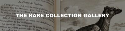 A title card labelled: The Rare Collection Gallery.