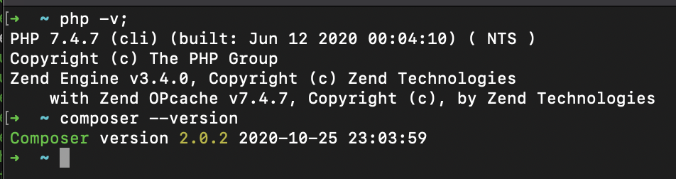 Terminal Screenshot of Output showing PHP and Composer versions