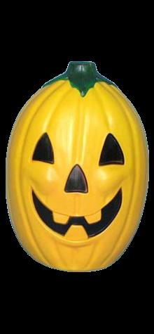 Pumpkin photo