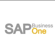 SAP Business One DI