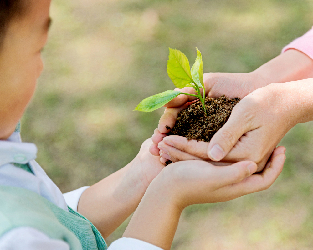 Simple Ways to Live a Sustainable Lifestyle