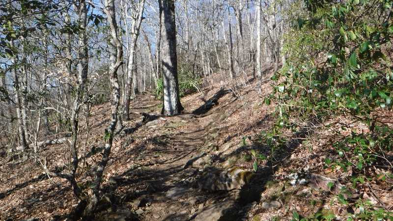 Continuing up to Tray Mountain