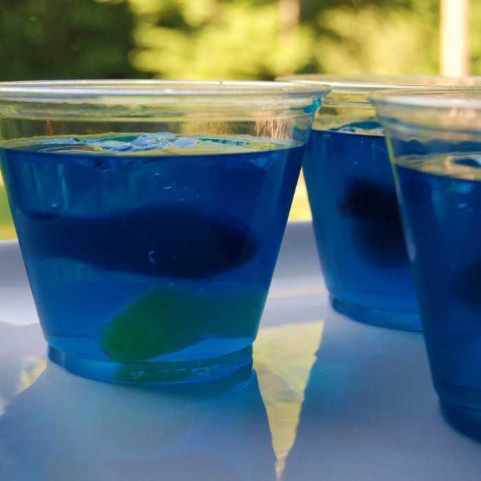 National Aquarium Cocktail