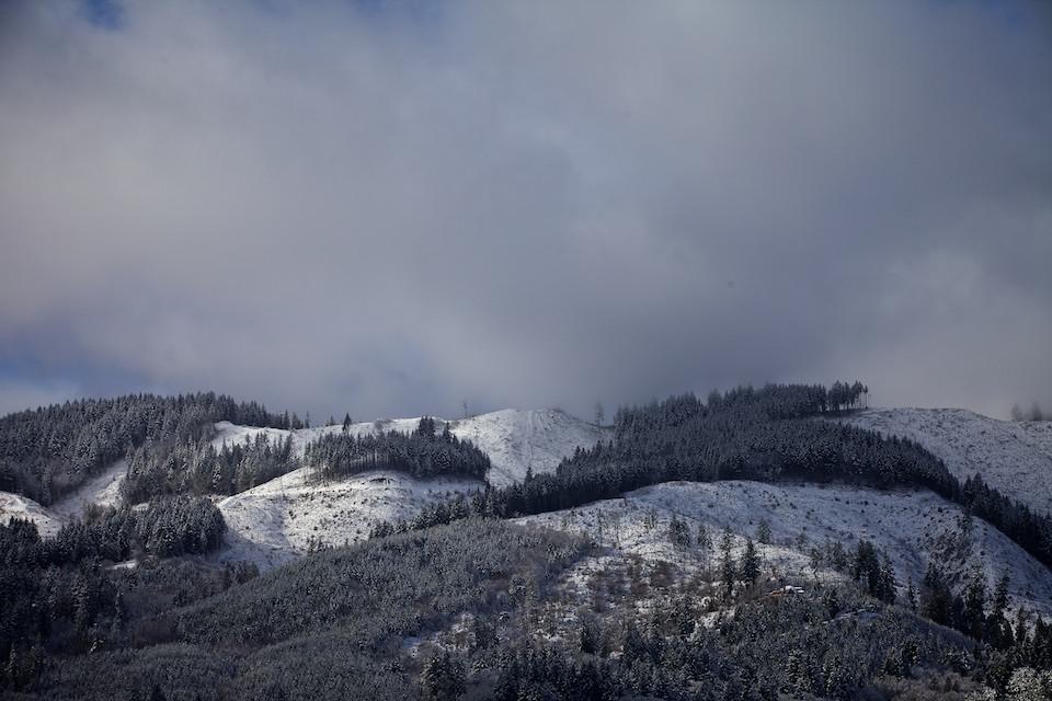 Snow on the Oregon Coast Range