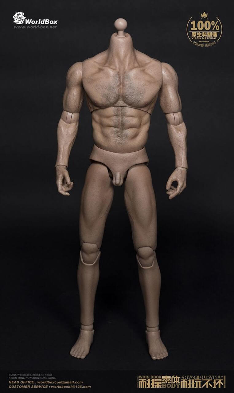 World Box AT012 Thick Chest and Broad Shoulder with Newly Characterized Real Muscle 1/6 Scale Body