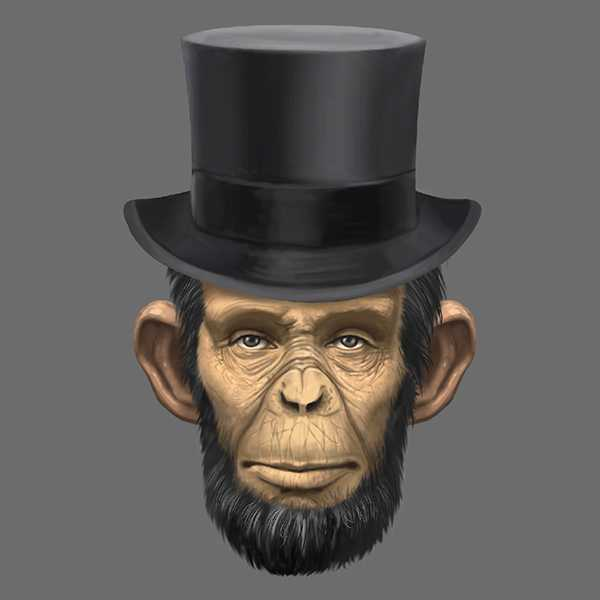 custom-illustration-abraham-lincoln-chimp