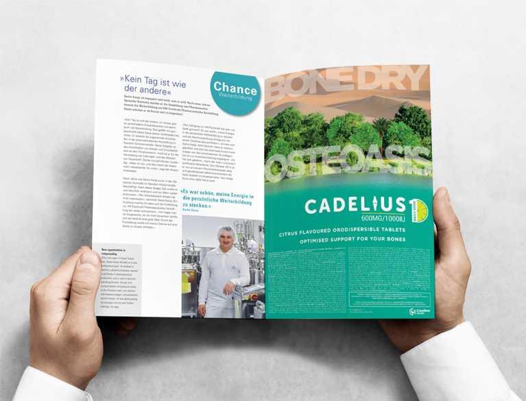 person reading cadelius brochure