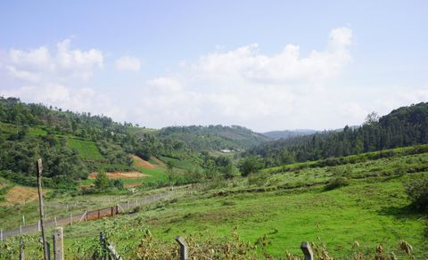 Gated Community with Plots for sale in Ooty   Vitrag Group