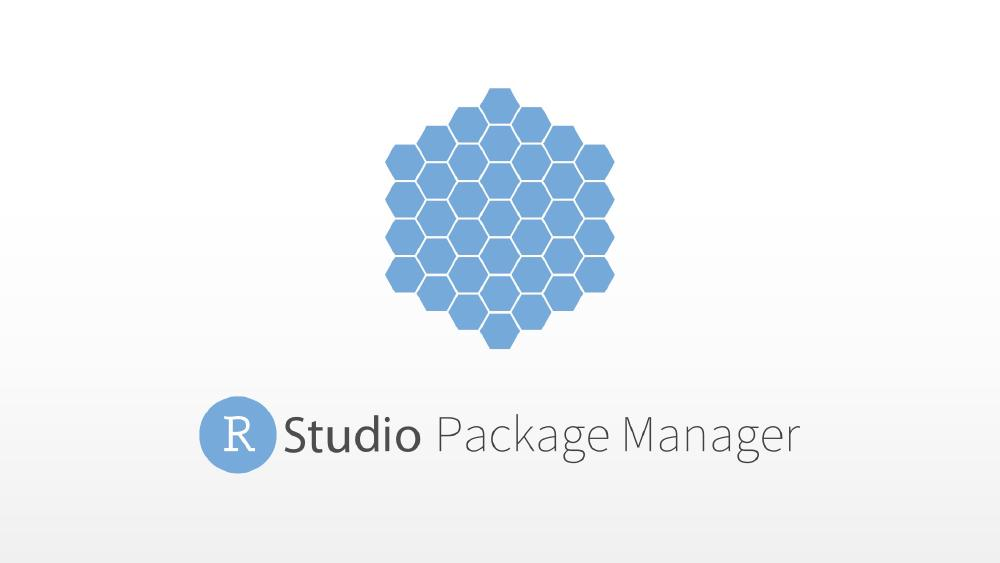Introduction to the RStudio Package Manager