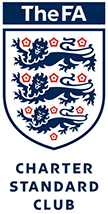 TheFA Logo