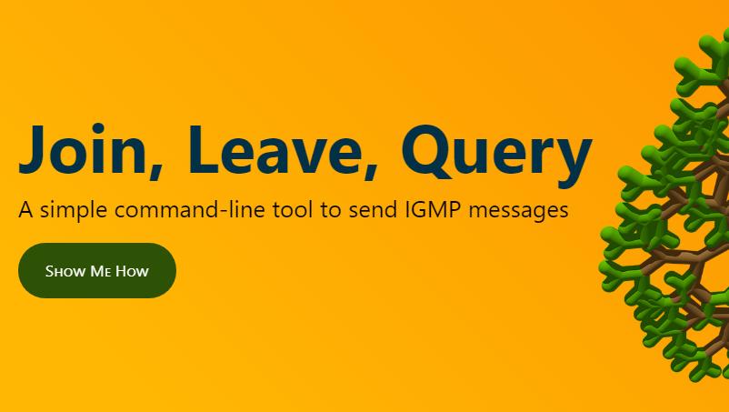 Send Igmp