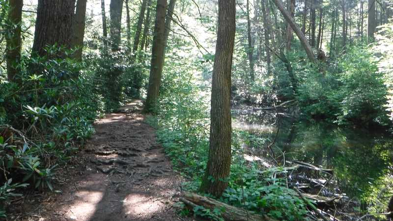 Trail next to stream in Caledonia State Park