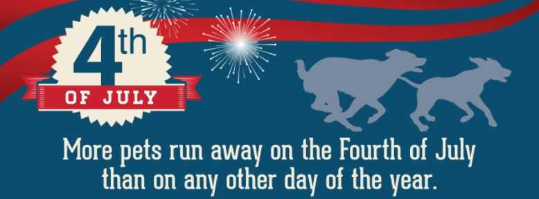 Happy 4th of July! Keep Your Dogs Safe!