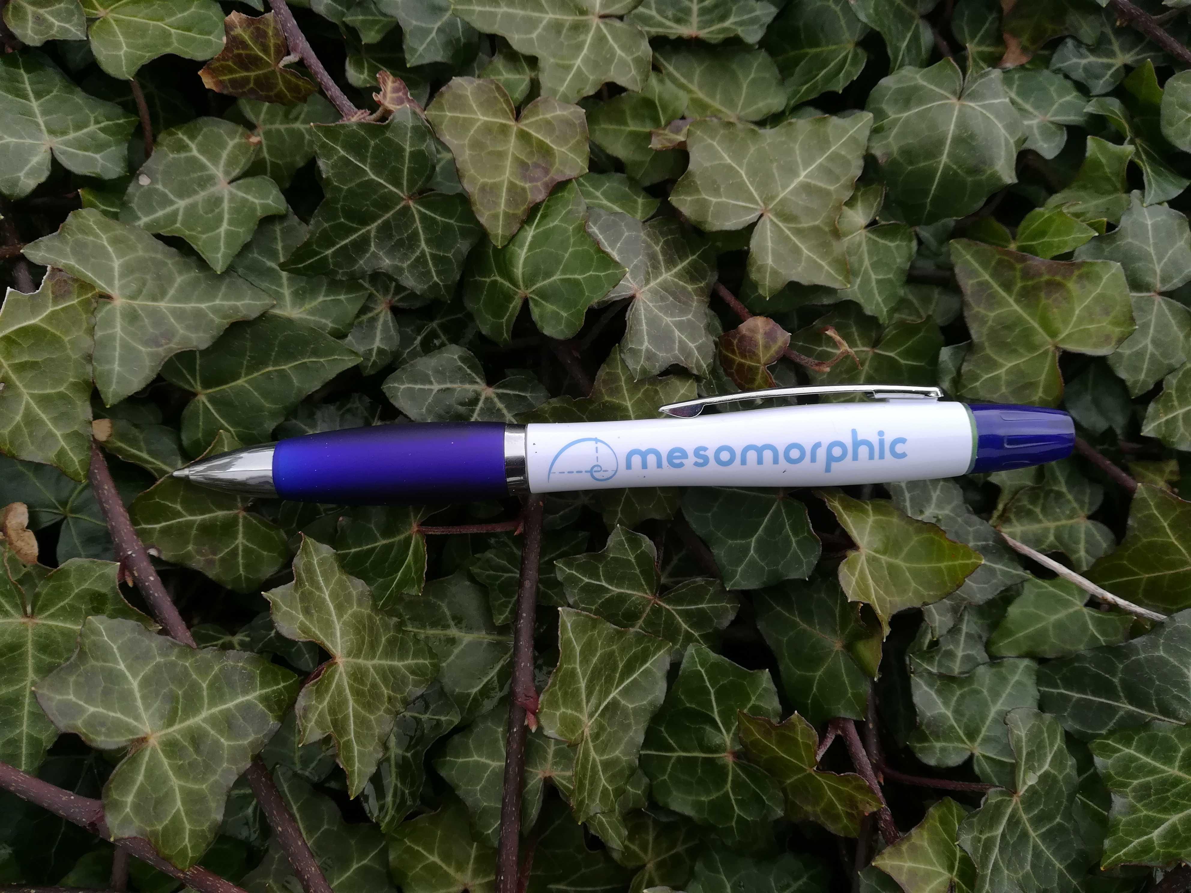 Mesomorphic Pen