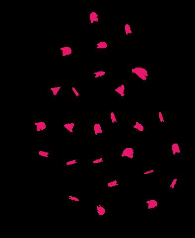 pink speckles