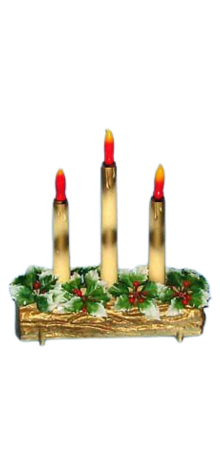 Three Candles On Log photo