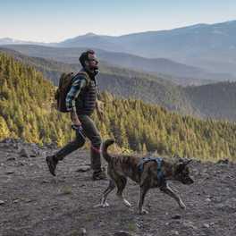Dog-Friendly Hikes: Montana