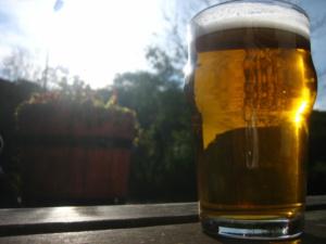 beer sun