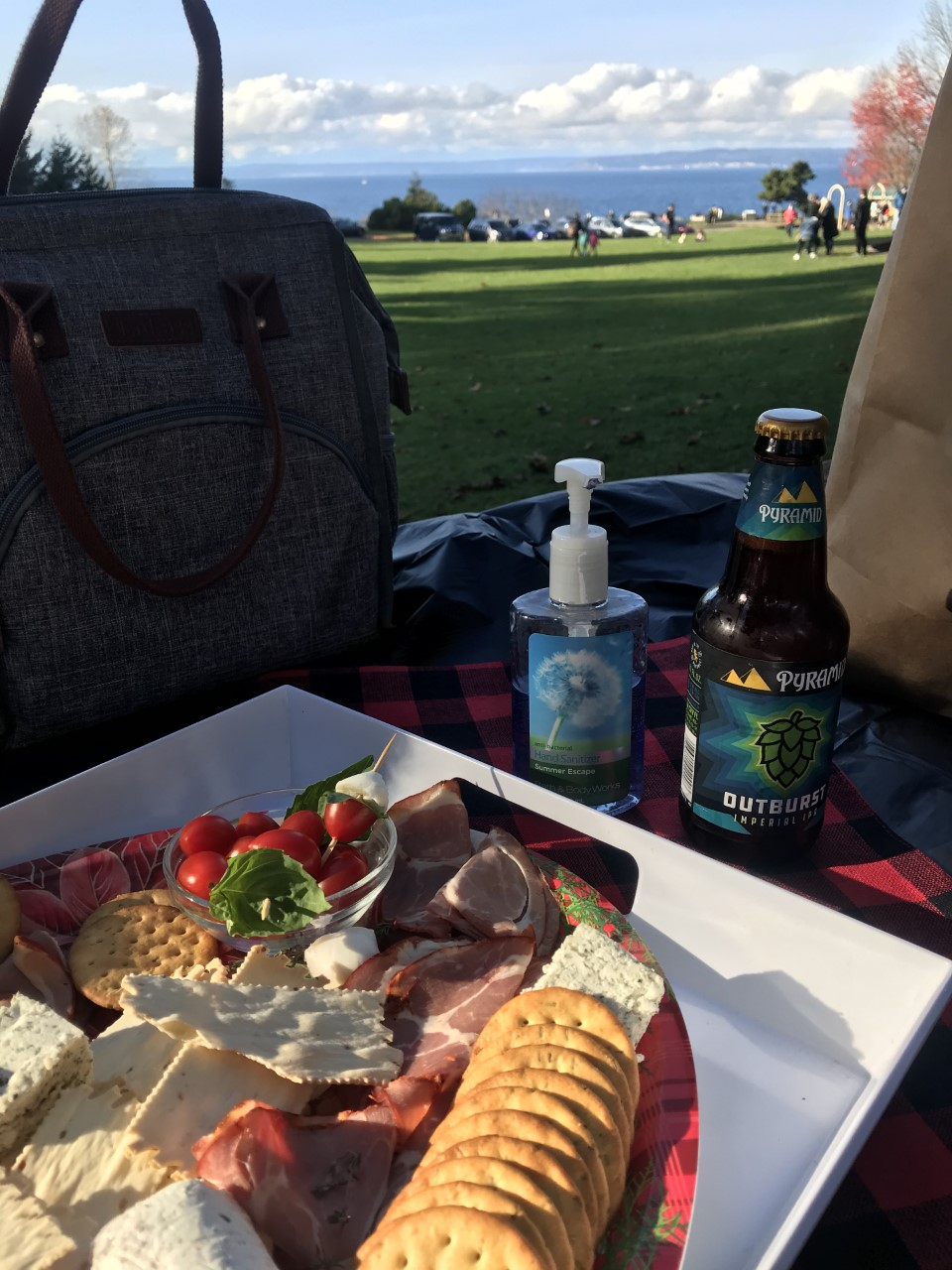charcuterie board with crackers, meats, cheese and fruits resting on a pinic cloth with a bottle of Pyramid beer. In the background is a blue sky and green park