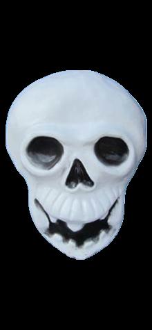 Skeleton Face photo
