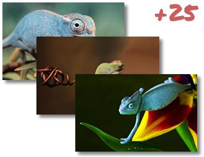 Chameleon theme pack