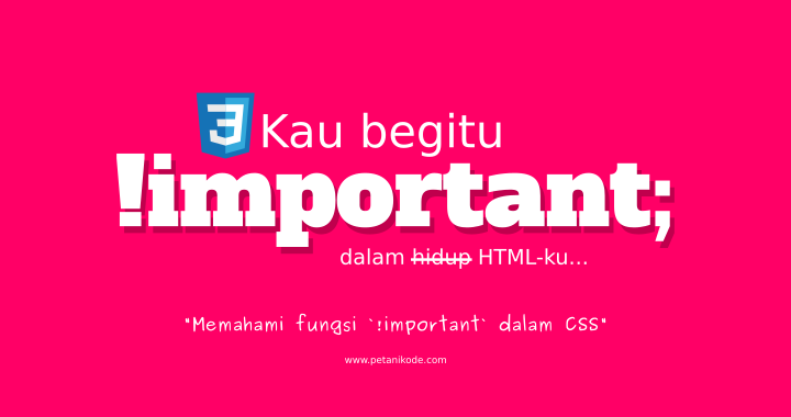 CSS Important