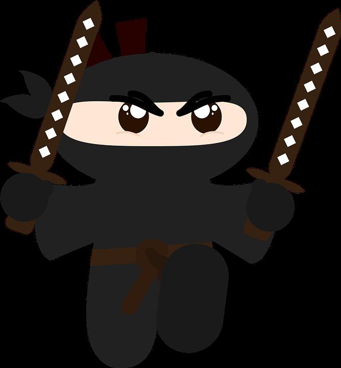 more awesome ninja