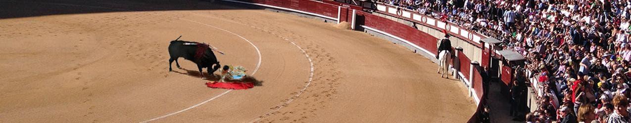 el torero merkur slot banner einer echten corrida